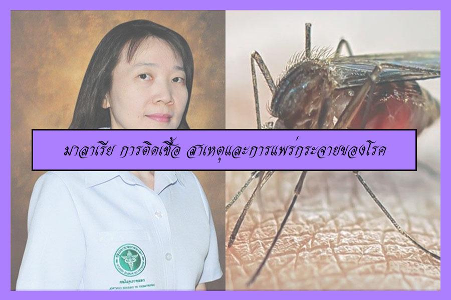 มาลาเรีย